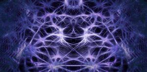 struttura cervello autismo