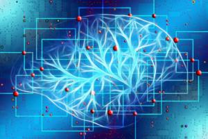Struttura cervello autistico